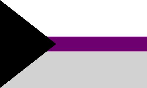 demisexual-flag-ENTITY